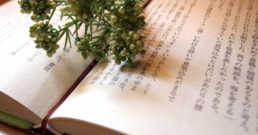 国語力は【要約】で飛躍的に伸びる!大学受験勉強法における国語の勉強法